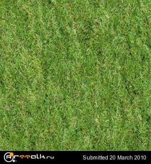 grass_147.jpg