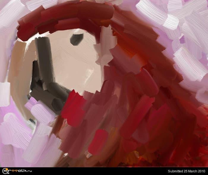 macaw_02_316.jpg