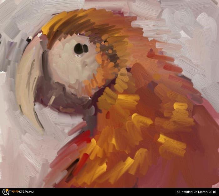 macaw_05_120.jpg