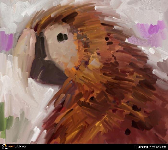 macaw_07_548.jpg