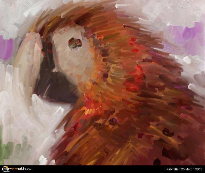 macaw_08_210.jpg