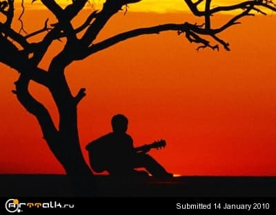 t_guitarist_394.jpg