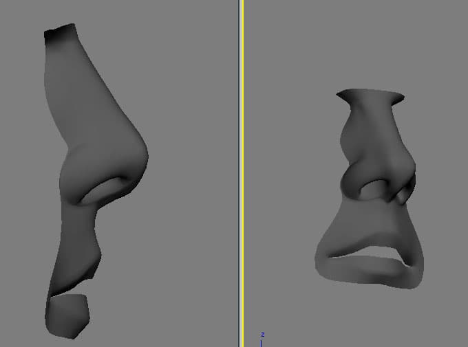 nose.jpg.2891abe4c0ebb2e2115a7af5fb5d49f1.jpg