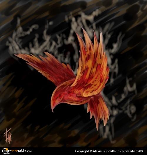phoenix.jpg.7c4ff193dabe665fd7599b97885e2005.jpg
