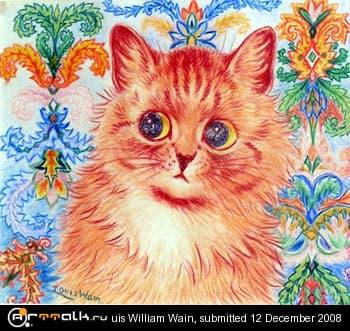 Wain_cat.jpg.7bf381e40f079e04eab2ad074555c9a0.jpg
