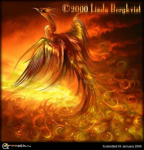 phoenix.jpg.690966a435216b59e27b2c8d39bef37e.jpg