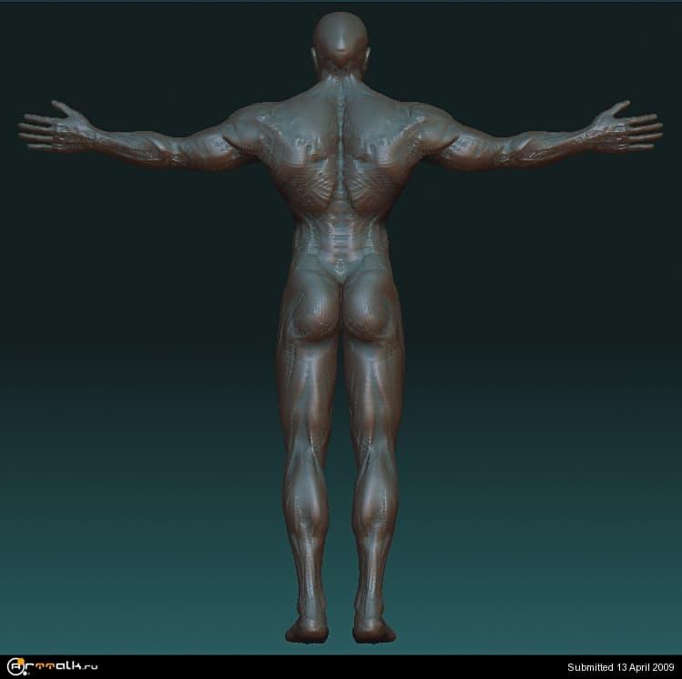 spina.jpg.a5afcdca0dfc60f94039093b7a4ab9f1.jpg