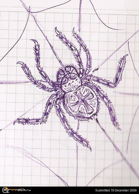 spider.jpg.c30ee8754cdef2caae5185bbb7b50ad6.jpg