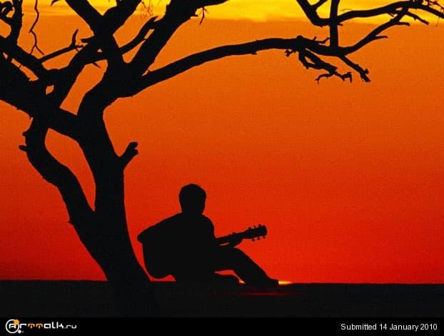 guitarist.jpg.600a8812b3f979a29462a40464a91b36.jpg