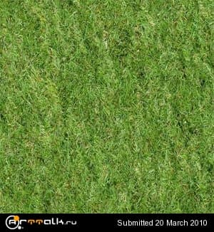 grass.jpg.bcb13f037243e996a5a35fc8af87fa6b.jpg