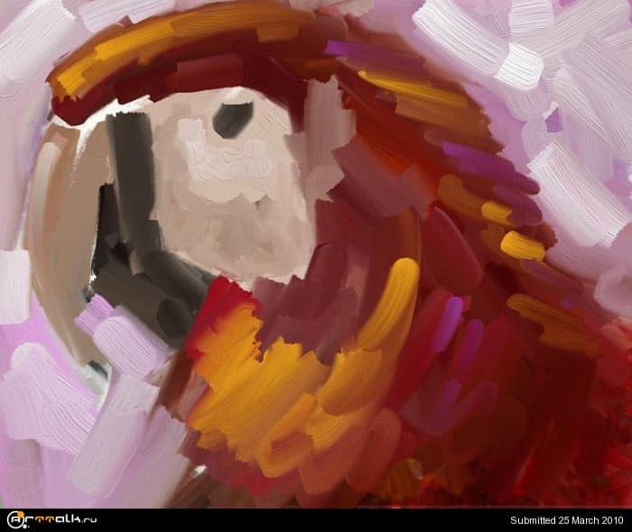 macaw_03.jpg.384ba79a08a9ac720a38db85872717a0.jpg