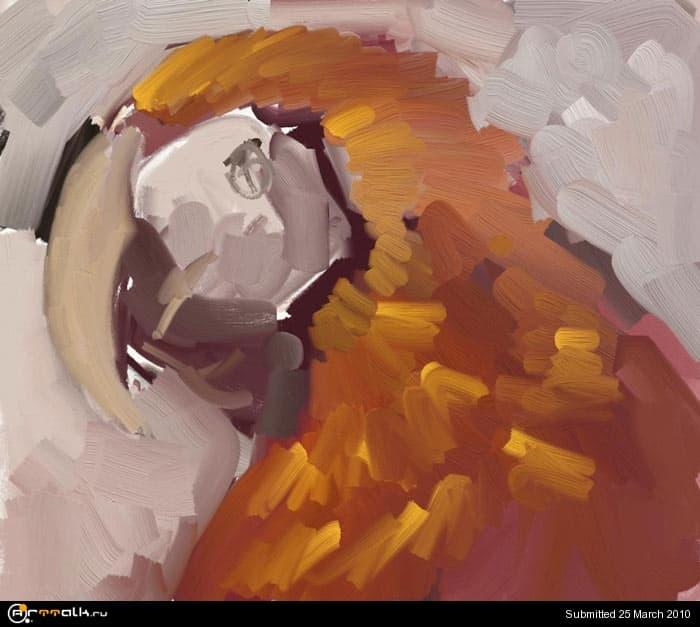 macaw_04.jpg.c84992a17879d593d0e36f300bd7d338.jpg