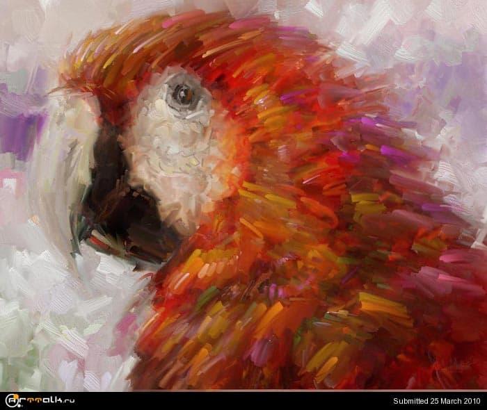 macaw_16.jpg.d75e5f9ea85b30eadaa091ff22d0503e.jpg