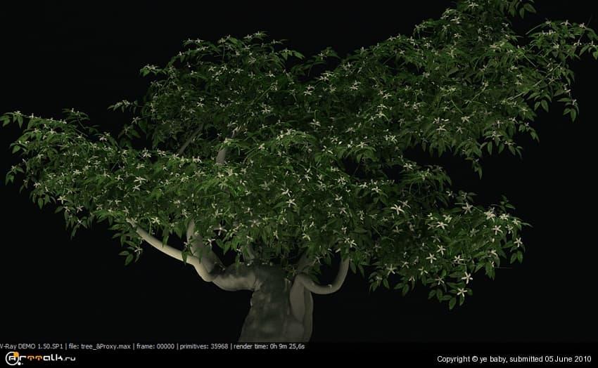 5a982680ecca3_tree_proxy.jpg.c15568f4b49fbe923d3453afd9e58900.jpg