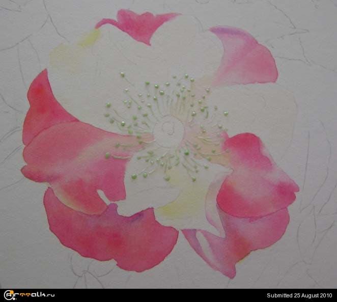 rose10.jpg.7eb4a09392b907f9ab888fb0c38080b8.jpg