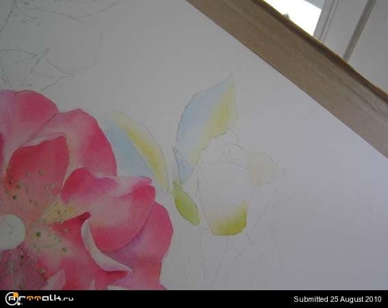 rose12.jpg.ee9778b27dbb3241e78b97bce70eddf3.jpg