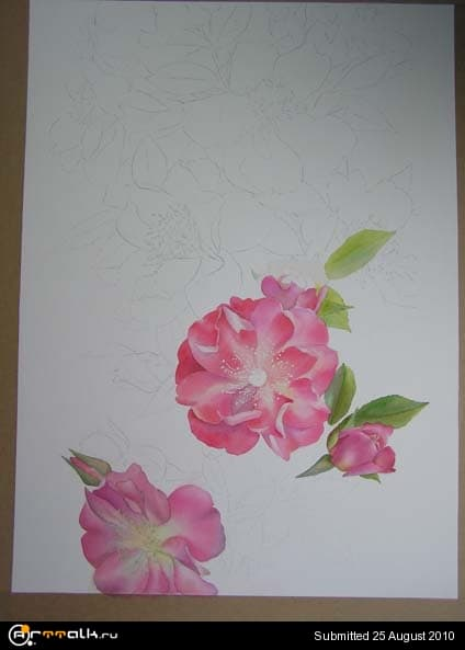 rose16.jpg.ef8cc96c59d0bc4cb21f6cd212cd1fea.jpg