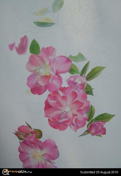 rose17.jpg.46484991a241ff5c2f093eaf76a972d6.jpg