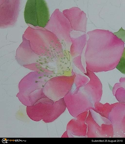 rose19.jpg.18cf7fbb468eaafed04cd386f48c5f93.jpg