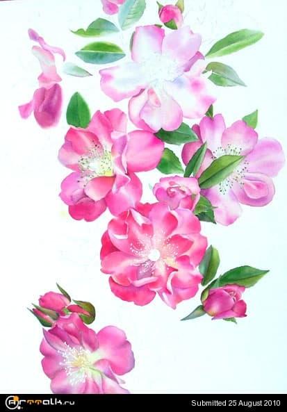 rose21.jpg.9e33548afe50df44203fa6077f19f926.jpg