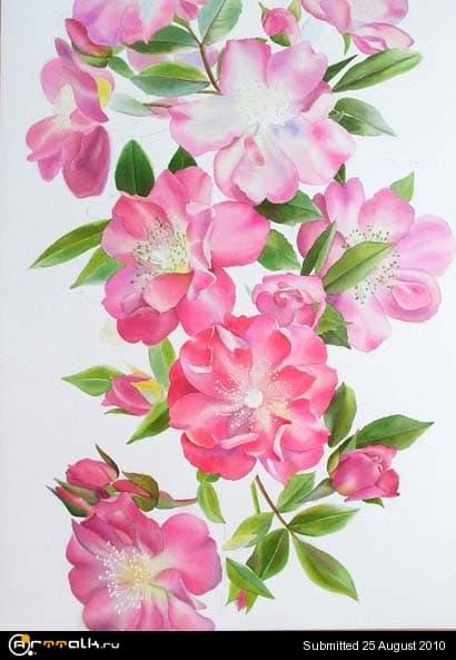 rose22.jpg.68b3d1f36e0e7de12da154c817cac32b.jpg