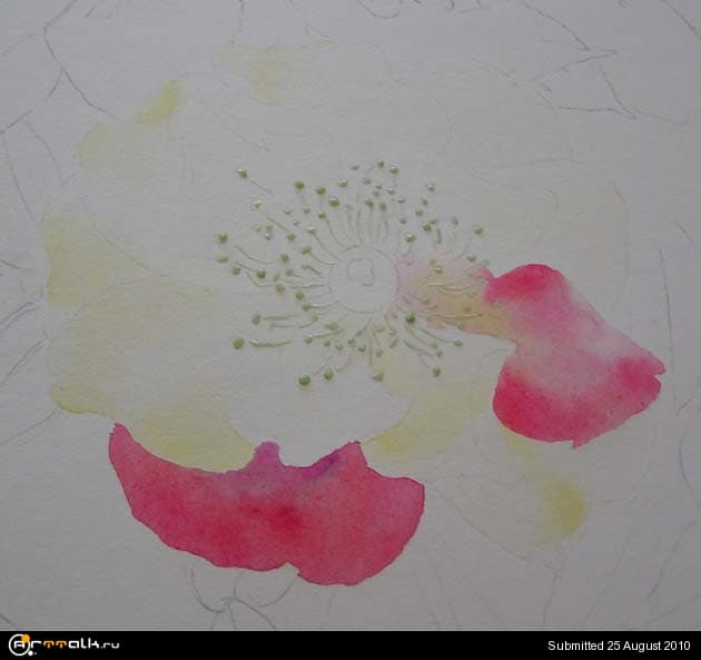 rose9.jpg.4cb51489865ef99736f705bf043ea2b9.jpg