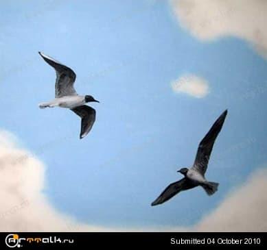 sky_06_cut.jpg.65dda3a9e6e529ec96c9be5f08f74010.jpg