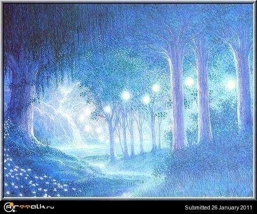 40181963_NightForest.jpg.285d052a36226b579f396c33f0ab0b49.jpg