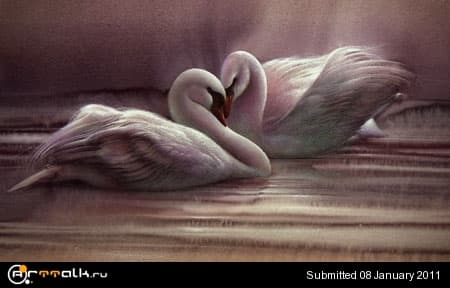 Swans.jpg.e108f3f38845449093fddcd6d8de2caf.jpg