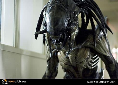 (040509162935)alienvspredator2_1.jpg.7acd51cdc22b88b9cd10db2a4d4bf874.jpg