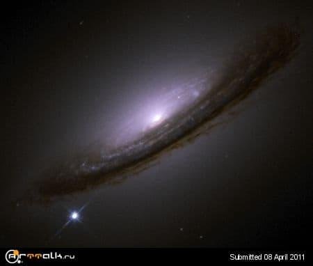supernovas.jpg.171f802e5f4c698226f73af1b8c06aec.jpg