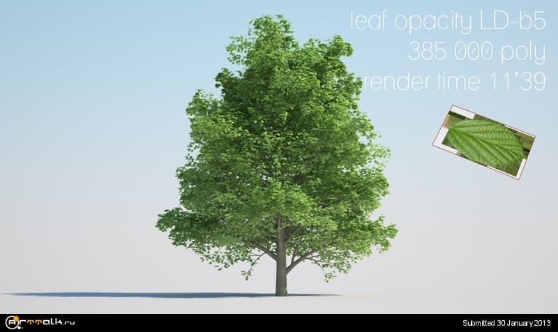 tree07_ALDER_opacity_LD-b5.jpg.dc6e5b342364aa9cc46babbb9aaa7ff8.jpg