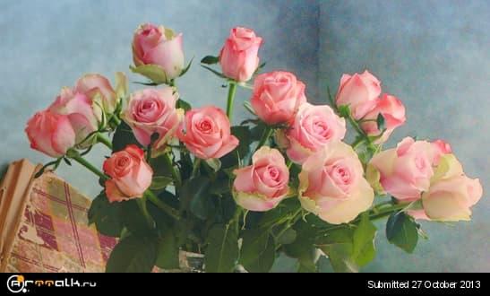 rozi.jpg.0d2adaa6e60acb1dcd56f7cf6f6ec18a.jpg