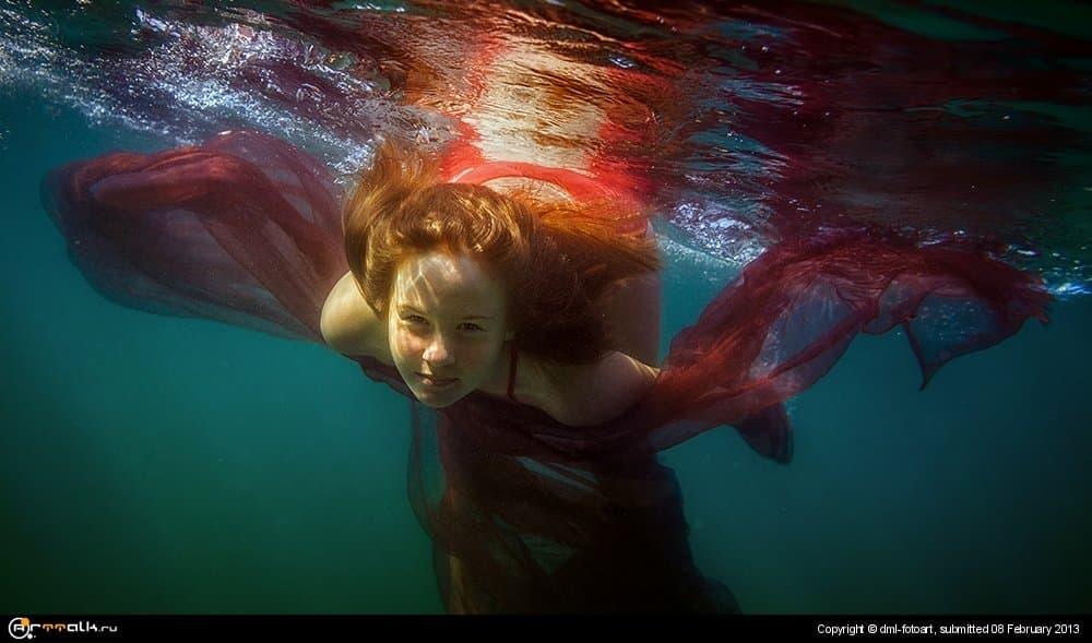 Underwater Bird