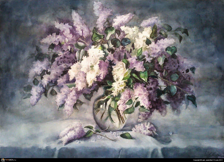 Diploma - Lilac