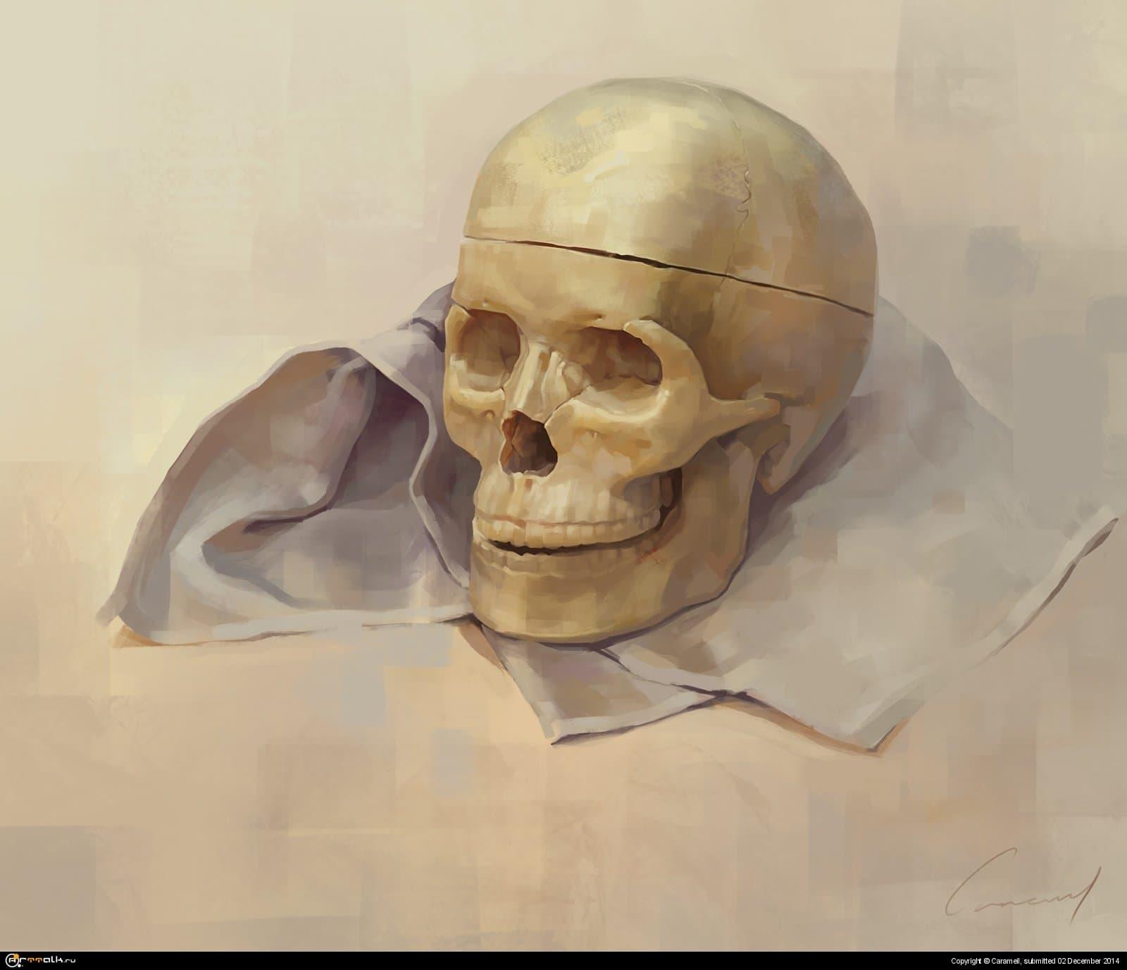 пластиковая черепушка, с натуры
