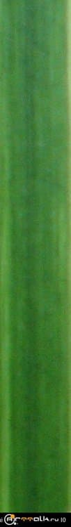 03_tekstura-travinki.thumb.jpg.28a7643e17292d9e9969342c177568b7.jpg