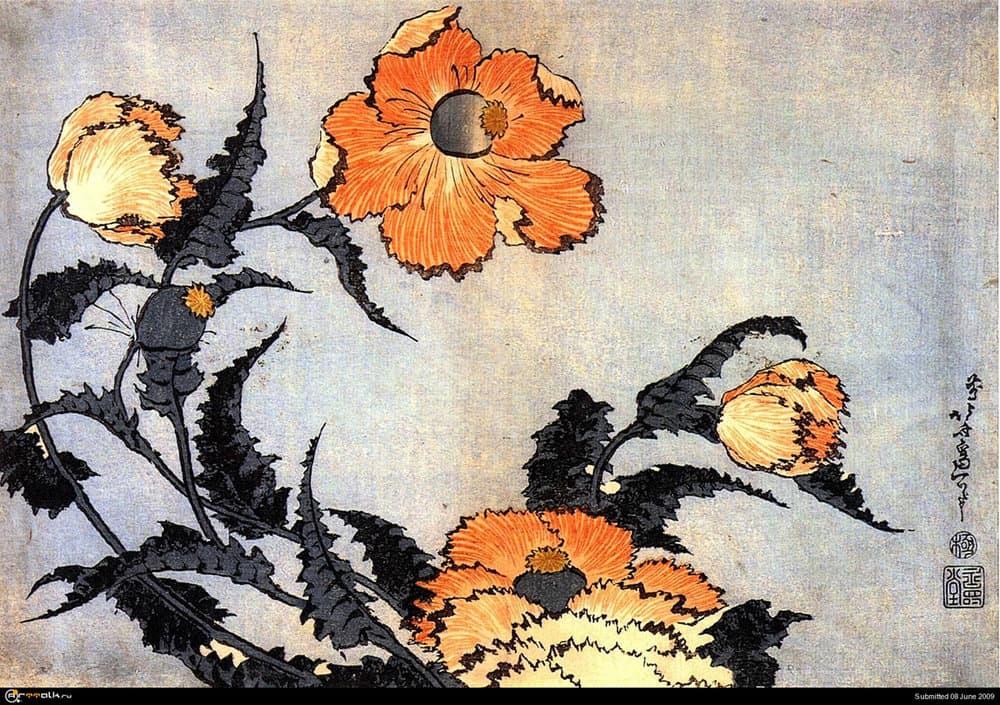 1226238321_hokusai_poppies.thumb.jpg.76bf6435d06979c466a76756c421f1ae.jpg