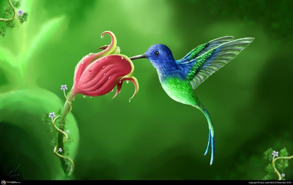 5a9829e2b7f70_Flower.thumb.jpg.adae487bfc99d3f3b3ed6fc1284a56a4.jpg