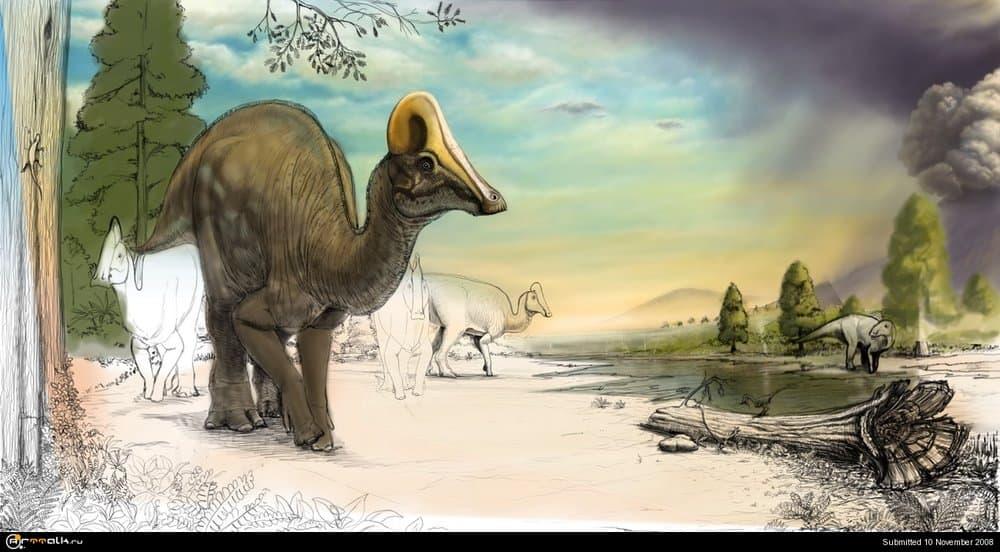Amurosaurs13.thumb.jpg.b59132d4f3b72d6ca28181481eb537a8.jpg