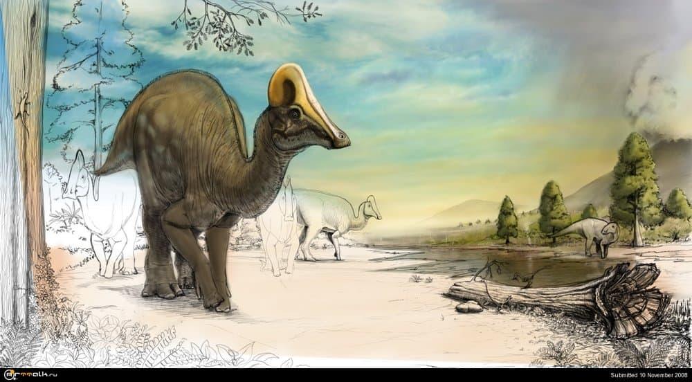 Amurosaurs6.thumb.jpg.1ca5ea3590c2ebe9e48434c3e6542ff4.jpg