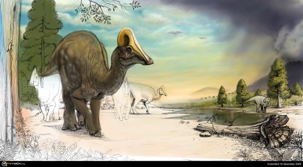 Amurosaurs9.thumb.jpg.634db330a22502a926f79274b5b2fd50.jpg