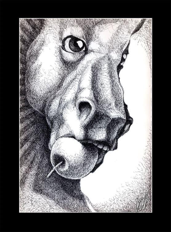 Horse01.thumb.jpg.85fbf359144a17345dab94231ba4c344.jpg