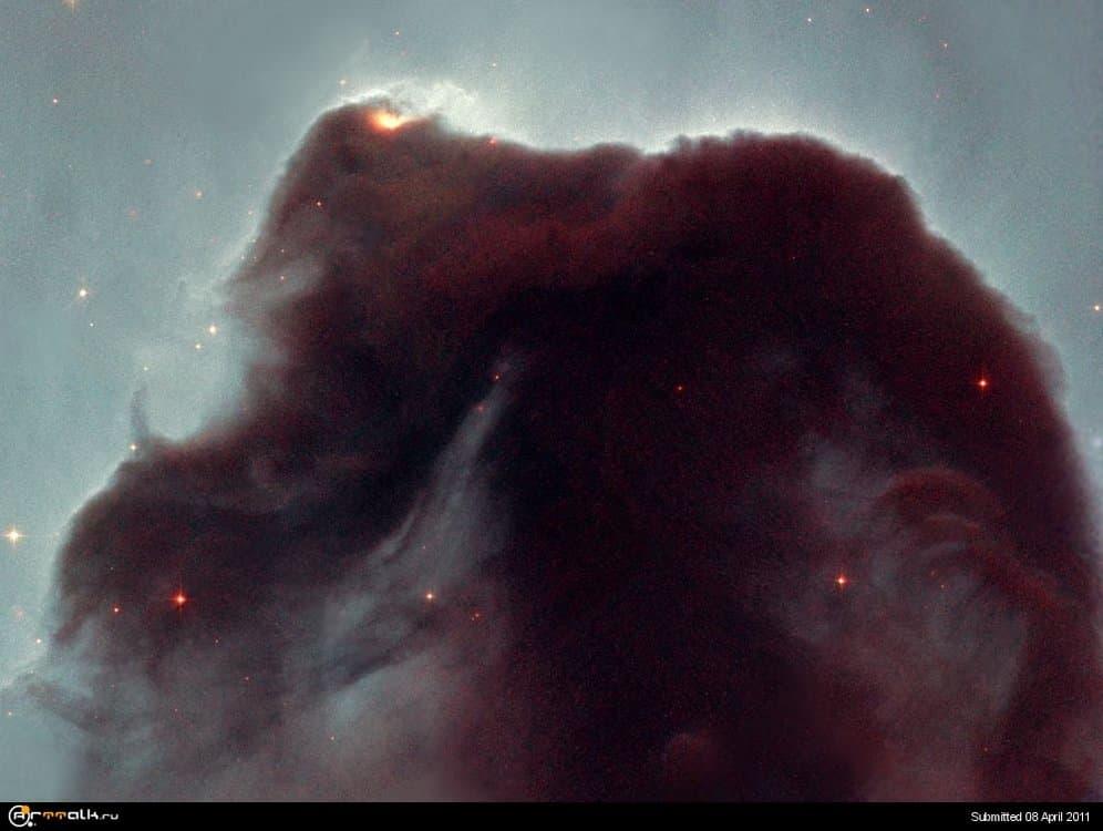 NebulaHorsehead.thumb.jpg.06fffe372e89b8bb647c81c398fb6ed4.jpg