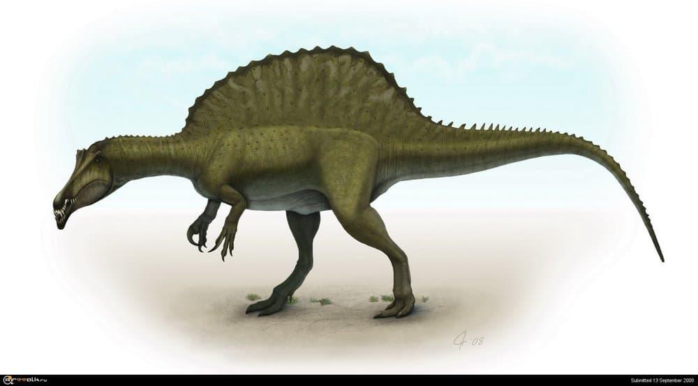 SpinosaurusBackgroundlow2.thumb.jpg.e6ca0655aa6d06ae63b2a29f9fe13def.jpg