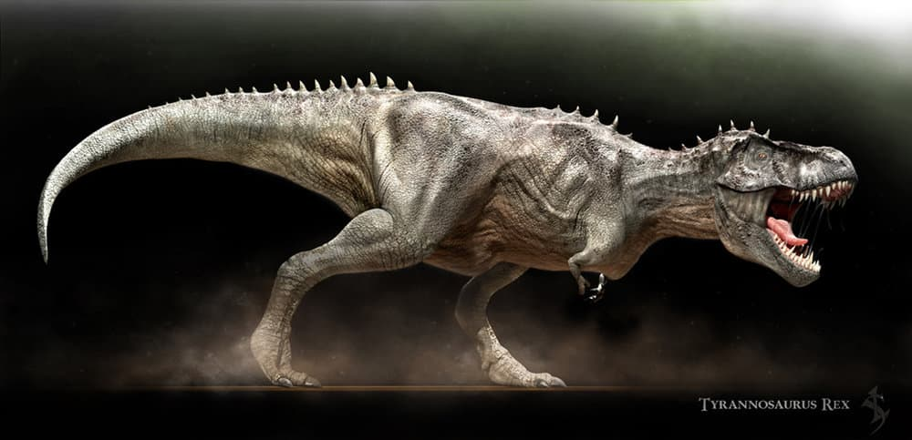 T-Rex1(Edit)-small.thumb.jpg.c7422478623a67f97a31b0a2c71ce486.jpg