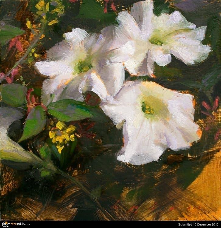 White_Petunias_by_thienbao.thumb.jpg.64672a8b4a2da898dc2bfea9619a5691.jpg