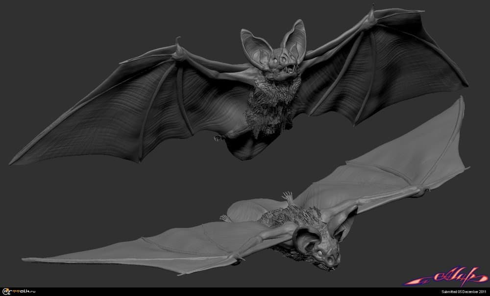 bat-2.thumb.jpg.c57444d9c25a605cdd01eb8862ca451c.jpg