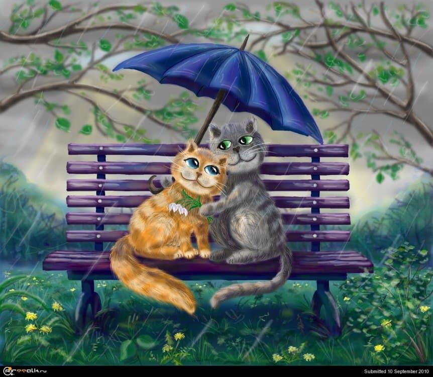 cats2111.thumb.jpg.e558ff38d236069b9a1b22814119cd9e.jpg