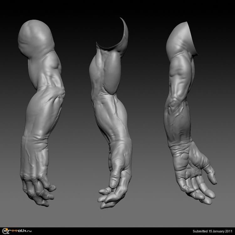 giant_hand_01.thumb.jpg.f6b633935049d8d72ddf4d8f40dc71a5.jpg